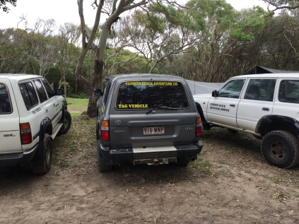 Our convoy parked at the Dingo's campsite