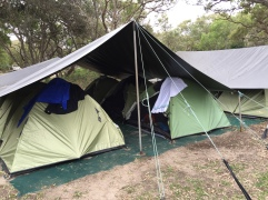 4-star luxury at the Dingo's campsite